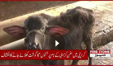 کراچی میں مٹن کڑاہی کے نام پر 'کٹوں' کا گوشت کھلائے جانے کا انکشاف